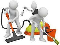 Expert carpet cleaning services in Berks . Garden maintenance.