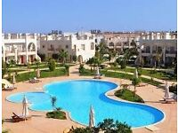 My own cancellation,Sunny! swimming pools! hotels! beach! warm!only 336£ all 7 days for 4 people