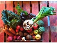 Bengrove Bounty Box - Local Organic Fruit & Veg With FREE DELIVERY To Your Door