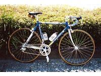 Carerra racing bike