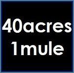 40acres1mule