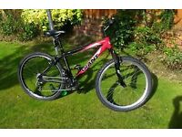 """giant rock 17"""" aluminium adult mountain bike"""