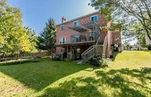 2 Bdrm Walkout apartment - utilities included (Angus)