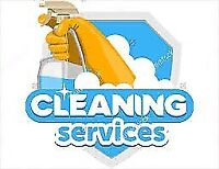 Exceptional cleaning lady and team!