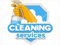 DOMESTIC HOUSE CLEANING SERVICE......10pound/hour