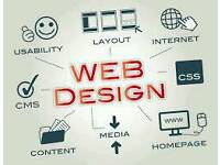 × Professional Web Design - £250 ×