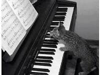 Piano lessons / leçons de piano
