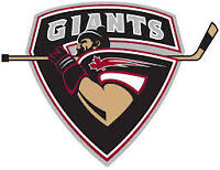 Wanted Vancouver Giants Game Worn Goalie Jersey