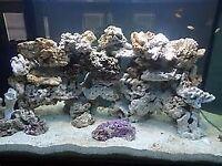 30kgs of aquarium rock