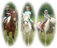 Party or Event, Pony Rides