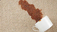 Carpet and Rug Cleaning done right!!!