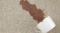 DEEP STEAM CARPET CLEANING and Quality of Services at the most a