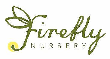 Firefly Nursery