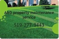 Lawn care & property maintenance services
