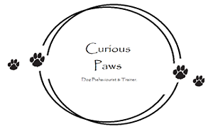 Curious Paws - Puppy Training and Dog Behaviour Sydney City Inner Sydney Preview