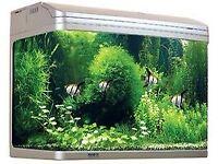Aqua One AR620 Aquarium
