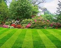 Lawn Cutting, Snow Plowing and Grounds Landscaping 705-931-5434