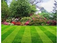 Quality screened topsoil and garden lawn turf for sale