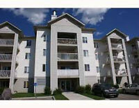 2 BDRM Spacious Condo for Rent in Airdrie - Utilities Included