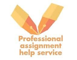 Assignment help(Accounting,IT,Business,HRM,Age care , child care) Perth Perth City Area Preview