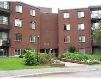 2 bedroom condo for rent/SALE available July 1st