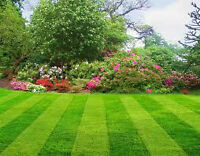 Summer Lawn Cutting and Grounds Maintenance