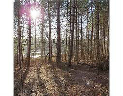 Tay River! 2 acre residential lots - Perth Village Peterborough Peterborough Area image 3