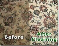 Professional Carpet Steam Clean