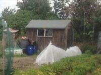 8 x 6 Garden Shed