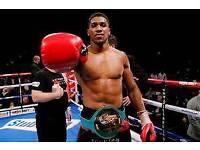 Antony Joshua vs Pulev - Boxing Tickets Millenium Stadium