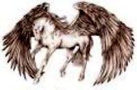 GUARDIAN ANGEL EQUINE REHAB