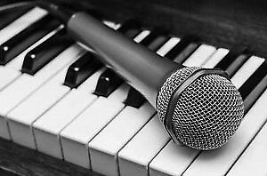 Singing or Piano Lessons Offered – Navan, Co Meath