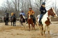 Learn to Ride! Learn to handle horses safely!