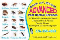 ADVANCED PEST CONTROL SERVICES, ONLY IN $99 & 1 YEAR WARRANTY