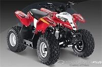 Looking for a 50 cc little quad