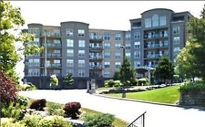 *REDUCED* Unit #310 - The Tides of Bedford South