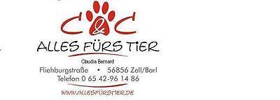du_und_dein_tier2007