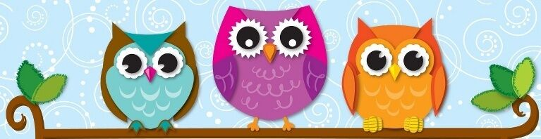 Owl Find it For You