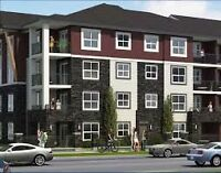 Brand New Condo for Sale with Underground Parking