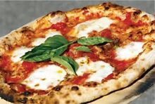 Simple to run Woodfire Pizza takeaway/delivery shop in Willoughby area Artarmon Willoughby Area Preview