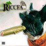riccfa3305