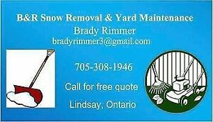 SCRAP REMOVAL IN LINDSAY