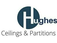 *** Suspended Ceilings and Partitions Specialist