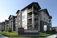 2 Bedroom Condo in Bridlewood SW, all utilities Included