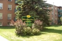 1 BEDROOM ALL INCLUSIVE - Orillia
