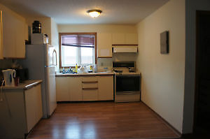student apt with walking distance to UW to rent from Jan to Apri Kitchener / Waterloo Kitchener Area image 2