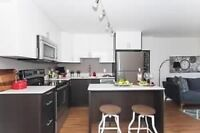 Redeveloped Two BDRM + Den Suite w/ Dishwasher in Centretown W