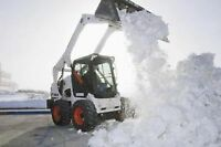 Bobcat services - Excavation and DirtJunk/Snow removal