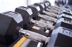 Hexagon Dumbbells Weights + Curlup/Tricep/Chin up bars