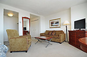 FULLY FURNISHED 1 Bedroom in Downtown Ottawa!  January 1st